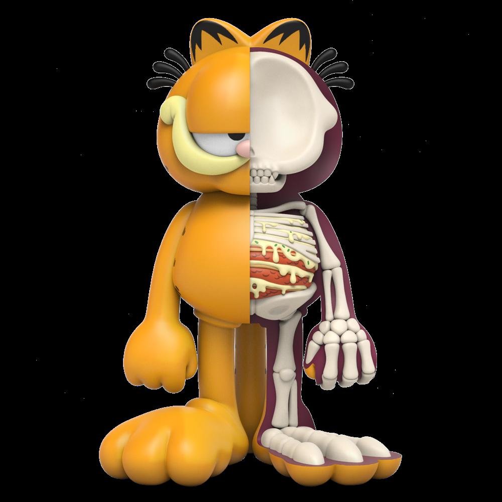 XXRay+ Garfield